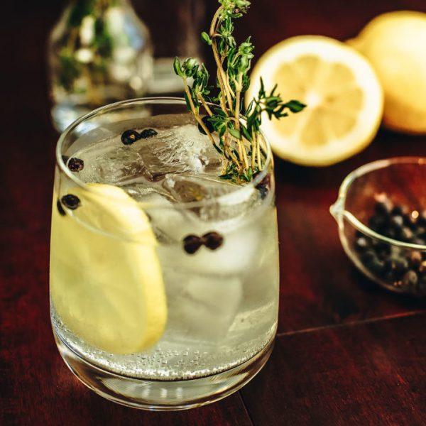 Så blandar du Sveriges bästa Gin & Tonic – här är recepten