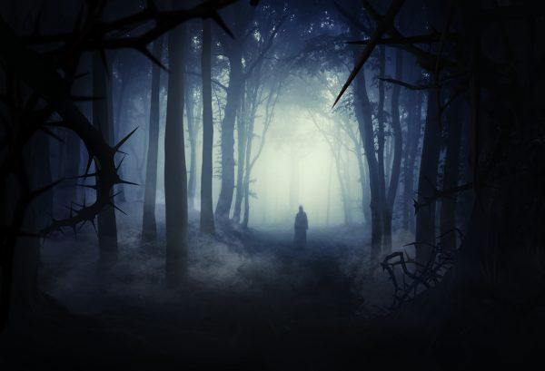 Fira Halloween i en hemsökt skog – idag öppnar Lisebergs nya skräckäventyr